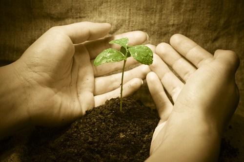 image@www.advisorswithpurpose.ca